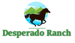 Desperado Ranch